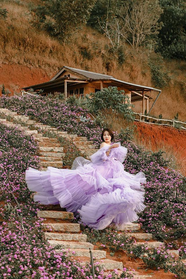 xuất hieôn cánh dồng hoa lavender tím ngắt lớn nhất dà laot, sống ảo bao xuất sắc - anh 12