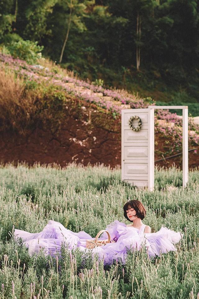 xuất hieôn cánh dồng hoa lavender tím ngắt lớn nhất dà laot, sống ảo bao xuất sắc - anh 15