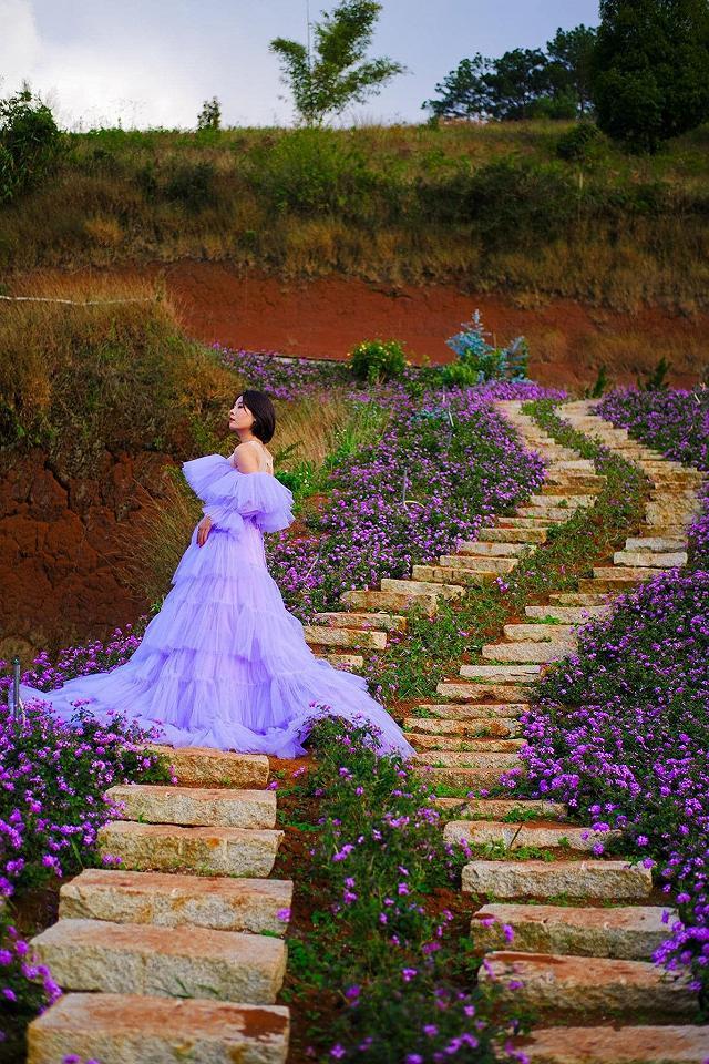 xuất hieôn cánh dồng hoa lavender tím ngắt lớn nhất dà laot, sống ảo bao xuất sắc - anh 13