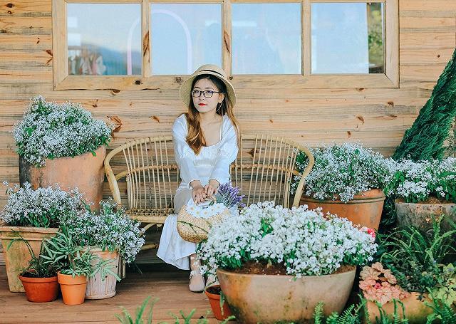 xuất hieôn cánh dồng hoa lavender tím ngắt lớn nhất dà laot, sống ảo bao xuất sắc - anh 7