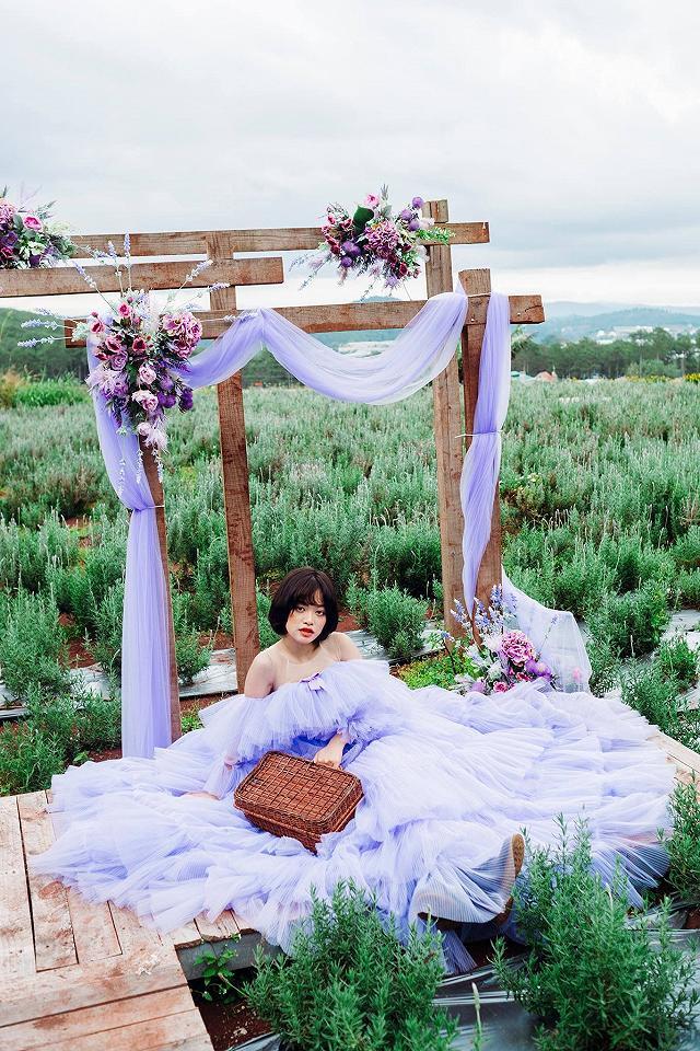 xuất hieôn cánh dồng hoa lavender tím ngắt lớn nhất dà laot, sống ảo bao xuất sắc - anh 8
