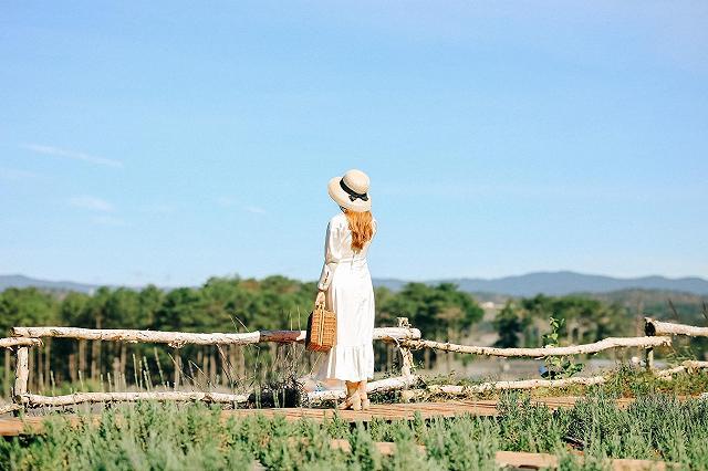 xuất hieôn cánh dồng hoa lavender tím ngắt lớn nhất dà laot, sống ảo bao xuất sắc - anh 16