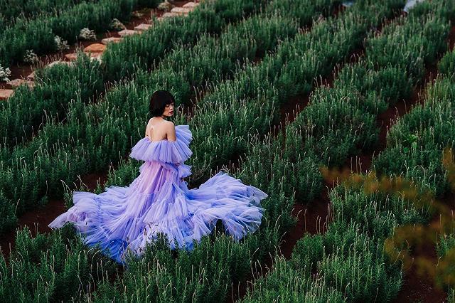 xuất hieôn cánh dồng hoa lavender tím ngắt lớn nhất dà laot, sống ảo bao xuất sắc - anh 21