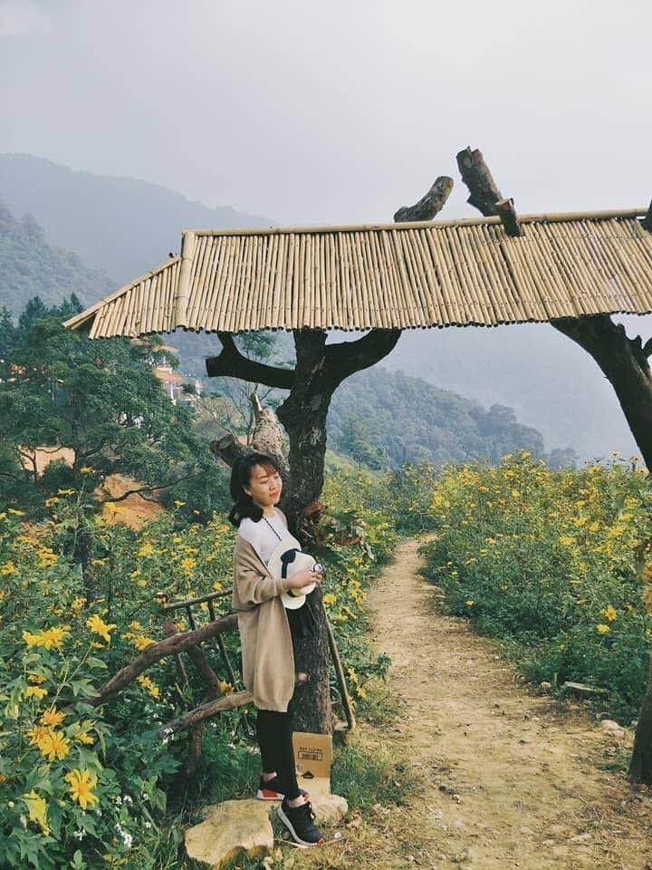 """di di cho chi mua hoa da quy """"van nguoi me"""" dang khoe sac tai tam dao - anh 11"""