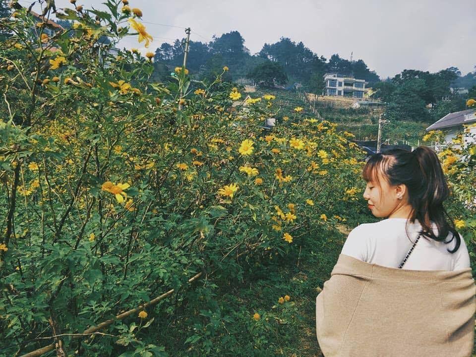 """di di cho chi mua hoa da quy """"van nguoi me"""" dang khoe sac tai tam dao - anh 14"""