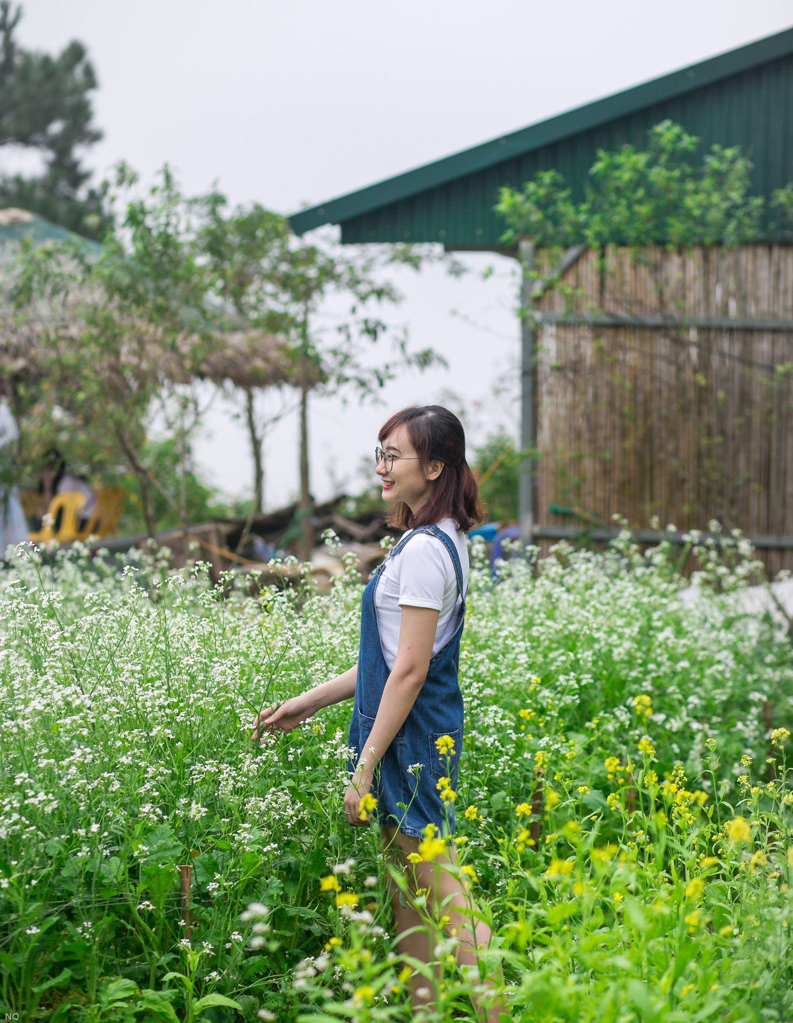 """di di cho chi mua hoa da quy """"van nguoi me"""" dang khoe sac tai tam dao - anh 33"""