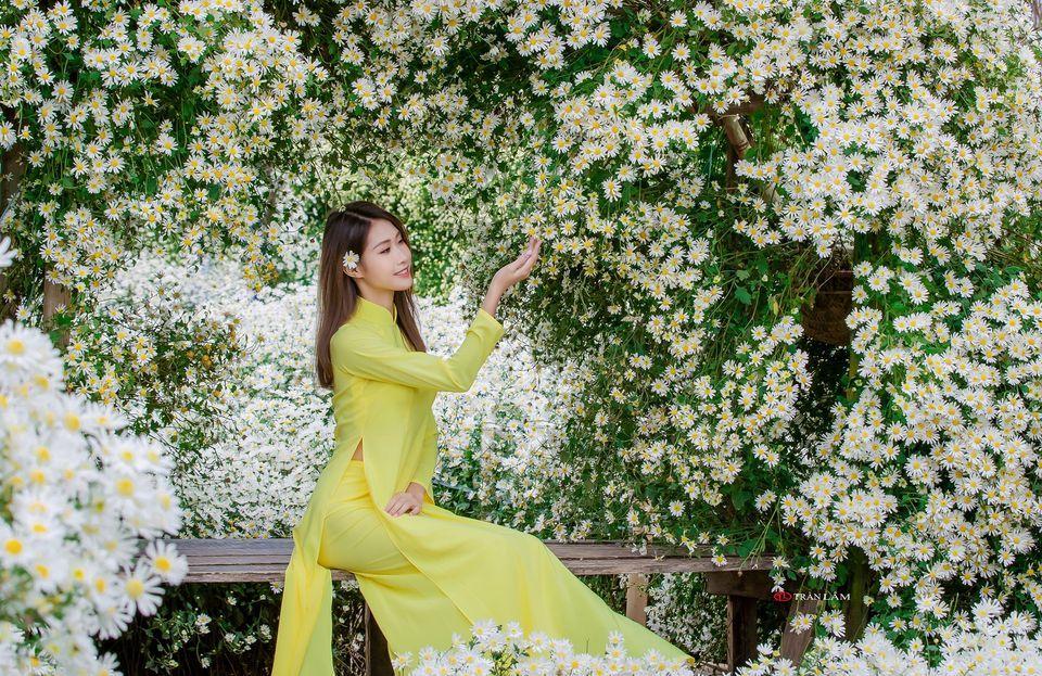 """dep toi """"hon xieu phach lac"""" vuon cuc hoa mi trangtinh khoi it nguoi biet o ha noi - anh 29"""