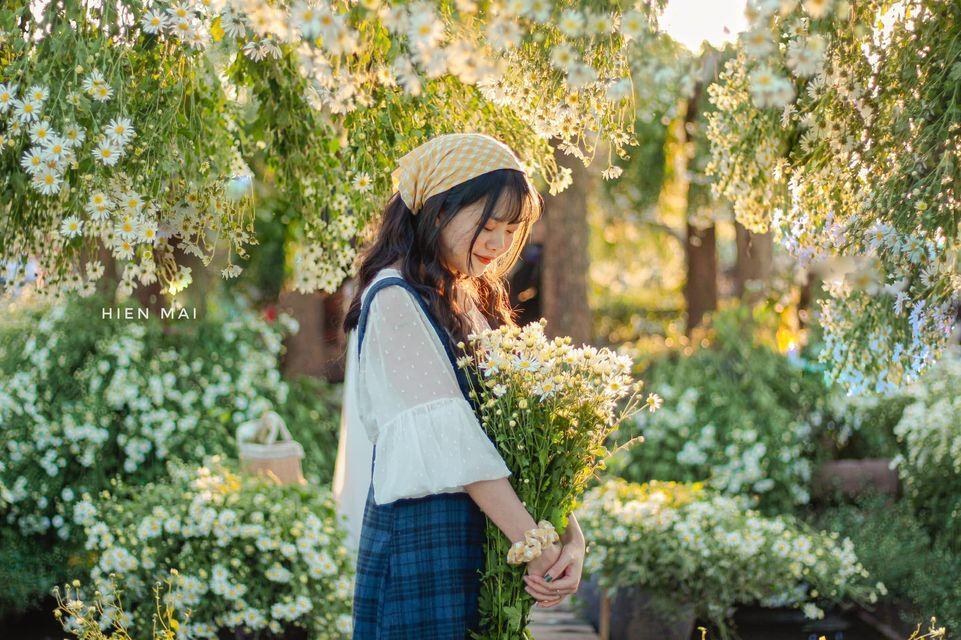 """dep toi """"hon xieu phach lac"""" vuon cuc hoa mi trangtinh khoi it nguoi biet o ha noi - anh 8"""