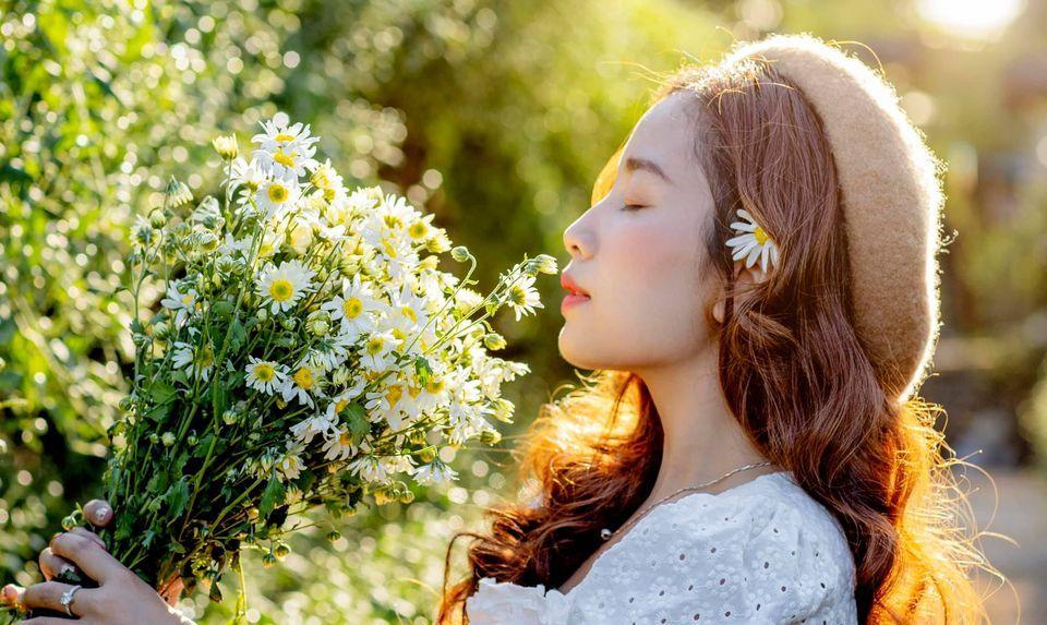 """dep toi """"hon xieu phach lac"""" vuon cuc hoa mi trangtinh khoi it nguoi biet o ha noi - anh 16"""