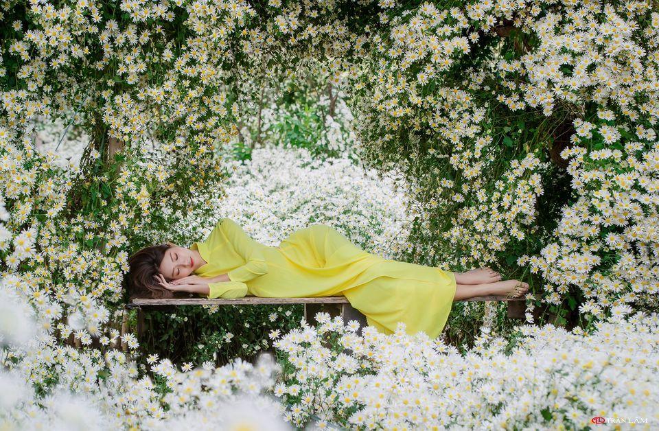 """dep toi """"hon xieu phach lac"""" vuon cuc hoa mi trangtinh khoi it nguoi biet o ha noi - anh 5"""