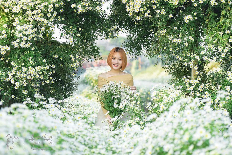 """dep toi """"hon xieu phach lac"""" vuon cuc hoa mi trangtinh khoi it nguoi biet o ha noi - anh 10"""