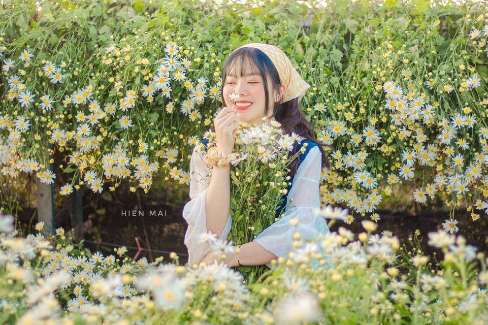 """dep toi """"hon xieu phach lac"""" vuon cuc hoa mi trangtinh khoi it nguoi biet o ha noi - anh 1"""