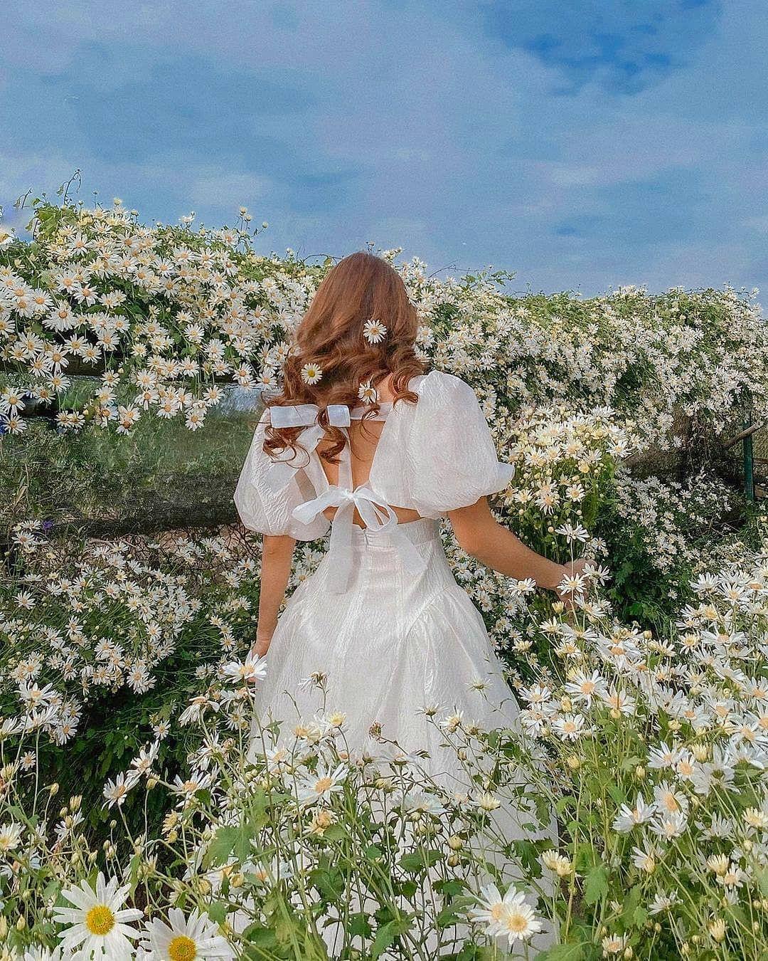"""dep toi """"hon xieu phach lac"""" vuon cuc hoa mi trangtinh khoi it nguoi biet o ha noi - anh 26"""